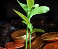 Greener economy