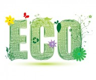 Become environmentally sustainable